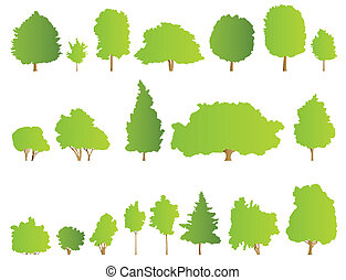dettagliato, albero, illustrazione, fondo, collezione