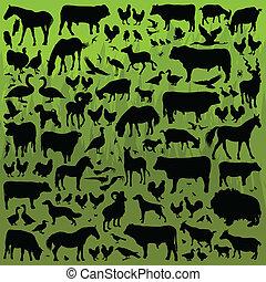 dettagliato, animali, fattoria, collezione, silhouette, vettore, illustrazione, fondo