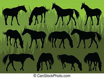dettagliato, cavallo, fattoria, illustrazione, silhouette, vettore, collezione, fondo, sport