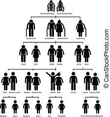 diagramma, albero, famiglia, genealogia