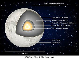 diagramma, vettore, struttura, illustrazione, luna