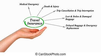 diagramma, viaggiare assicurazione