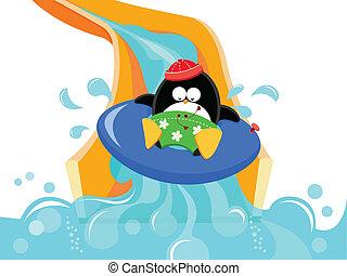 diapositiva acqua, pinguino
