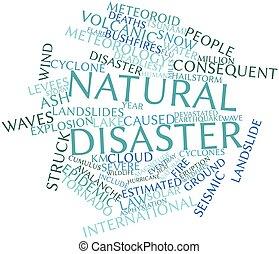 disastro naturale