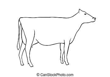 disegnare, mucca, mano
