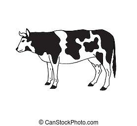 disegnato, schizzo, vettore, mucca, mano