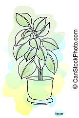 disegno, morbido, acquarello, blurry, pot., vettore, pianta, fondo., ficus, isolated., bello, colors.