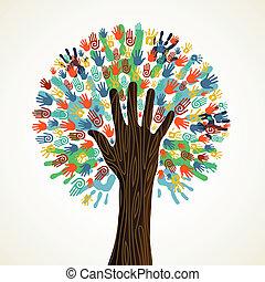 diversità, albero, isolato, mani