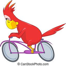 divertente, biker., parrot.