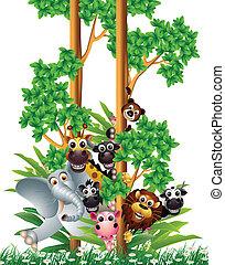 divertente, cartone animato, animale, collezione