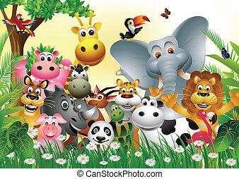 divertente, cartone animato, animale
