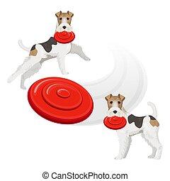 divertente, denti, terrier, cane, volpe, rosso, frisbee