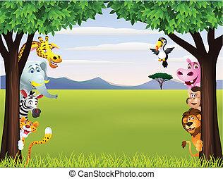 divertente, safari, animale, cartone animato