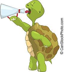 divertente, screaming., turtle.