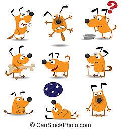 divertente, set, cani