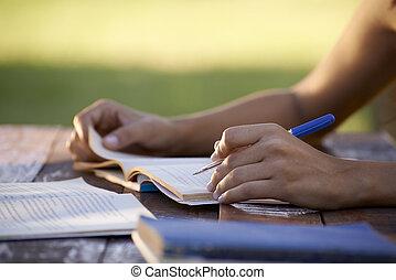 donna, persone, studiare, università, giovane, educazione, prova