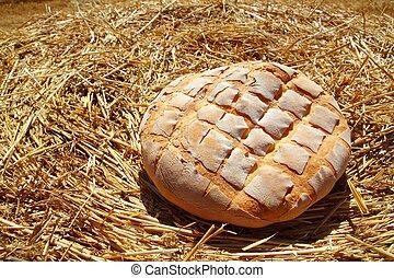 dorato, frumento, paglia, azotemia, rotondo, bread