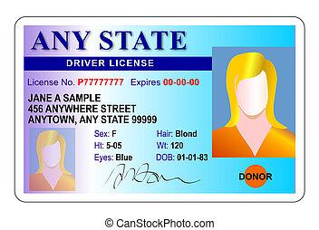 driver, femmina, licenza