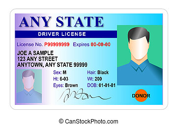 driver, maschio, licenza, isolato
