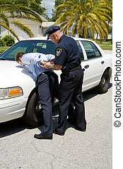 driver, ubriaco, arrestare