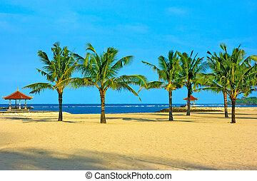 dua, isola, spiaggia, bali, nusa