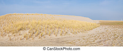 dune, sabbia