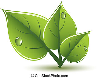 eco, congedi verdi, vettore, disegno