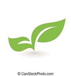 eco, foglia, illustrazione, isolato, icona, vettore, verde