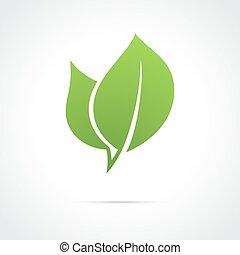 eco, icona, foglia verde