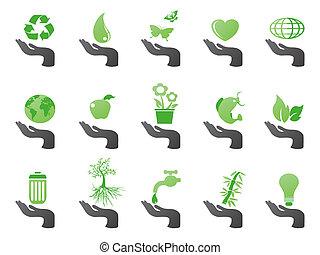 eco, mano, verde, icone