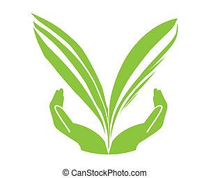 eco, verde, concetto, foglia, mano