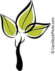eco, verde, icon., vettore, albero