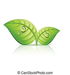 ecologia, foglie, illustrazione, vettore, verde, icona
