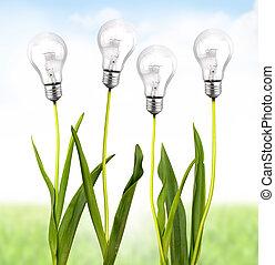 ecologico, energia