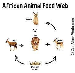 educazione, cibo, africano, web, animale