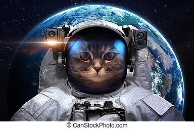 elementi, esterno, ammobiliato, questo, immagine, spacewalk., space., nasa, astronauta