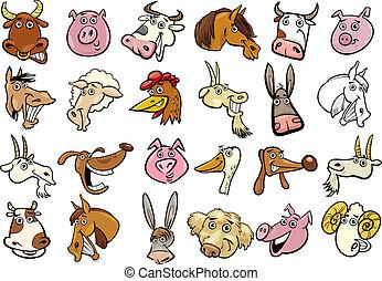enorme, set, teste, animali fattoria, cartone animato