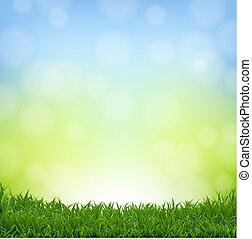 erba, bordo, fondo, natura