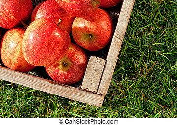 erba, cassa, mele