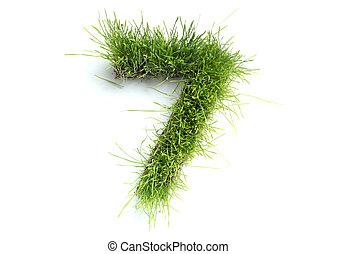 erba, fatto, -, numeri, 7