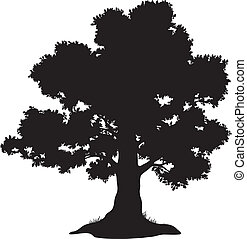 erba, silhouette, albero quercia