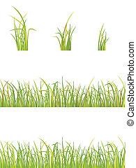 erba, variazione