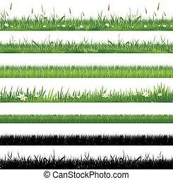 erba, verde, collezione