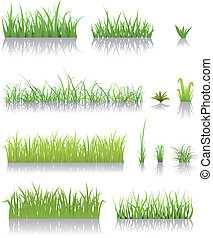 erba, verde, set