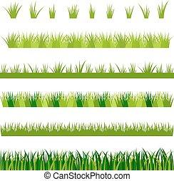 erba, vettore, verde, collezione, illustrazione