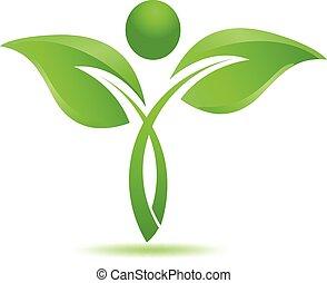 erbaceo, logotipo, naturale, mette foglie, verde