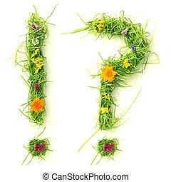 esclamazione, fatto, &, fiori, punto interrogativo, erba