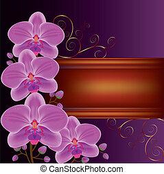 esotico, dorato, fiore, testo, orchidee, curls., posto, fondo, decorato