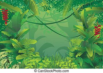 esotico, foresta tropicale