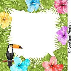 esotico, ibisco, uccello, colorito, fiore, cornice, tucano, giungla, fiori